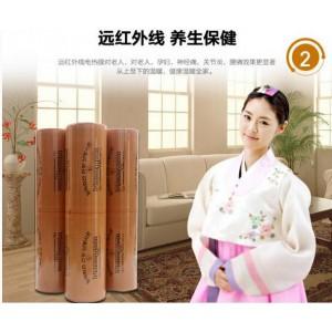 供应上海地区安全舒适电地暖-- 上海月希实业有限公司