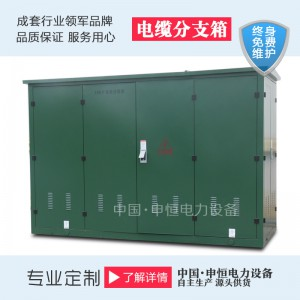 工廠直銷DFW-12一進三出冷軋鋼板歐式電纜分支箱-- 申恒電力設備有限公司