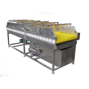 供应猕猴桃清洗脱皮机-- 青岛华创锐精机械有限公司