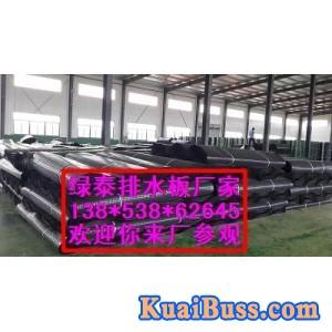 許昌大量屋面種植排水板¥25公分復合排水板【圖】-- 泰安市綠泰建材有限公司