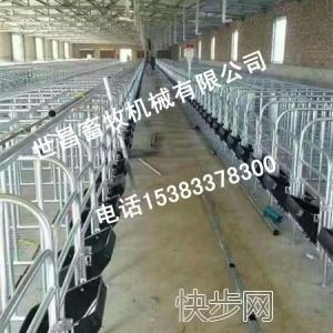 出售养殖设备母猪限位栏 猪用定位栏 猪用围栏 量大从优-- 万全县孔家庄镇弘昌养猪设备销售处