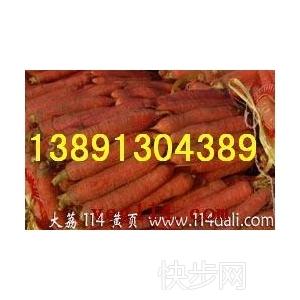 陜西大荔冷庫紅蘿卜基地,冷庫紅蘿卜產地價格-- 陜西大荔水果瓜果基地合作社