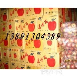 2017陜西冷庫紅富士蘋果產地銷售價格-- 陜西大荔水果瓜果基地合作社
