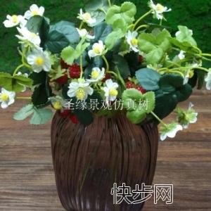 玻璃钢杆仿真莓草莓租金仿真莓草莓直销-- 广州市庆缘景观园林设计有限公司