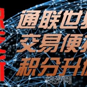 数字资产点对点积分交易系统开发-- 深圳源中瑞科技有限公司(龙华)