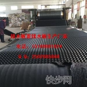 顶板\种植郑州卷材车库排水板15169881824-- 山东泰安市绿泰建材有限公司