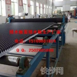2公分2.5公分3公分蓄排水板湛江(供货厂家)-- 山东泰安市绿泰建材有限公司
