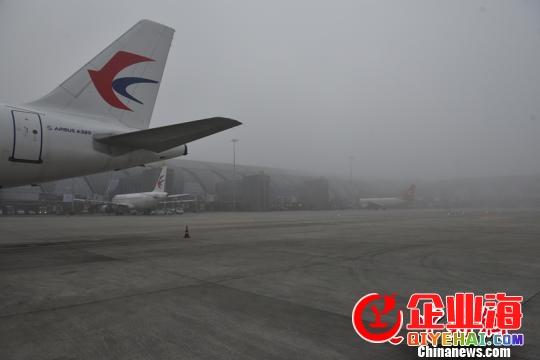 成都机场遭遇大雾天气 超70个航班受影响